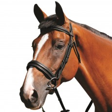 Mark Todd Padded Cavesson Bridle (Black)