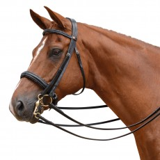 Albion KB Competition Weymouth Bridle with Crank (30mm thickness) + Plain Curb Rein