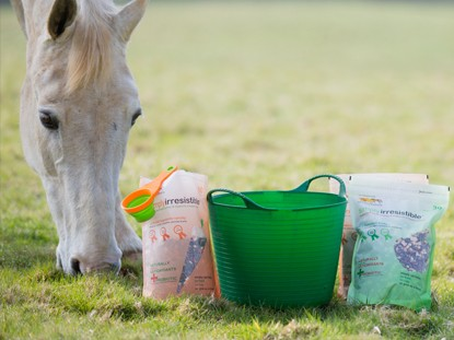 Horse Feed & Bedding
