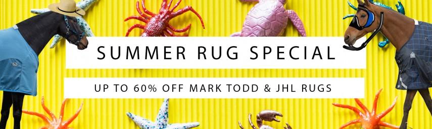 Summer Rug Special - Wychanger Barton