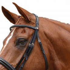 Sample Albion Padded Head Piece (For KB Competition Snaffle Bridle)