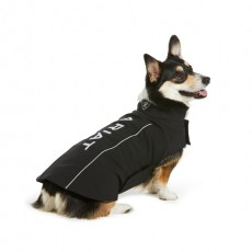Ariat Team Softshell Dog Jacket (Black)