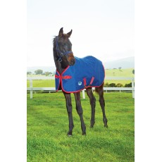 Weatherbeeta - 1200D Foal Turnout Rug - Standard Neck - Mediumweight (Navy/Red/White)