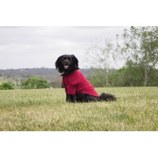Weatherbeeta Comfitec Fleece Dog Jumper (Burgundy)