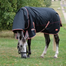 Weatherbeeta Comfitec - Premier With Therapy-Tec Turnout Rug - Detach-A-Neck Mediumweight (Black)