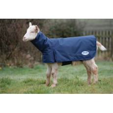 Weatherbeeta Goat Coat With Neck  (Navy)