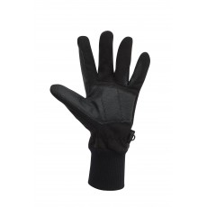 Dublin Adult's Everyday Showerproof Polar Fleece Riding Gloves (Black)