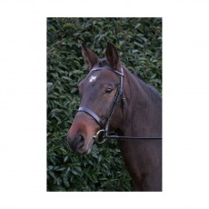 Hy Hunter Bridle with Rubber Reins