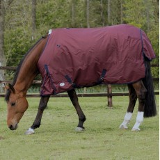 JHL (Clearance) Essential Mediumweight Turnout Rug (Burgundy & Navy)