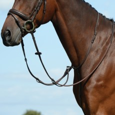 Collegiate Syntovia+ Plain Flat Running Martingale (Brown)