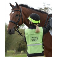Roma Reflective Safety Vest (Yellow)