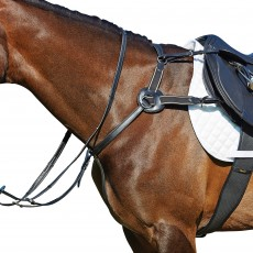 Kincade Leather 5-Point Breastplate (Black)