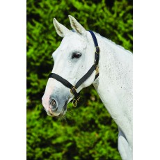 Kincade Deluxe Webbed Headcollar With Leather Crown (Black)