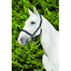 Kincade Deluxe Webbed Headcollar With Leather Crown (Navy)