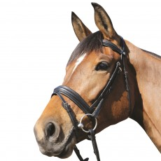 Mark Todd Padded Flash Bridle (Black)