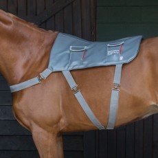Equilibrium Therapy Massage Pad (Pony)