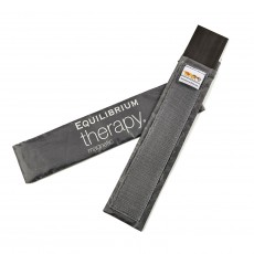 Equilibrium Therapy Spare Magnet - 2 Pack