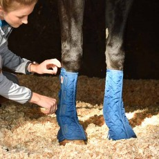 Equilibrium Stable Equi-Chaps