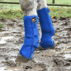Equilibrium Equi-Chaps Close Contact Chaps