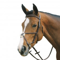 Mark Todd Plain Raised Bridle with Grackle Noseband (Havana)