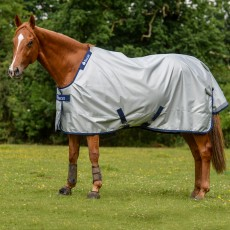 Bucas Power Turnout Light Rug