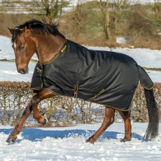 Bucas Irish Turnout Extra 300 Rug (Black/Gold)
