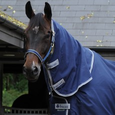 Bucas Celtic Stable Combi Neck (Navy)