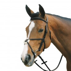 Mark Todd Plain Raised Bridle with Grackle Noseband (Black)