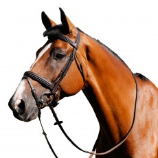 Mark Todd Double Raised Bridle (Havana)