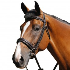 Mark Todd Padded Cavesson Bridle (Brown)