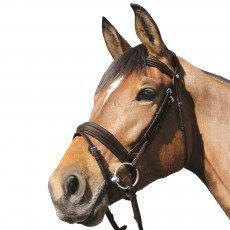 Mark Todd Padded Flash Bridle (Havana)