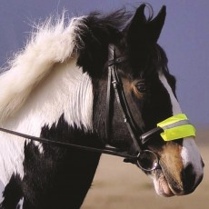 Equisafety Reflective Noseband (Yellow)