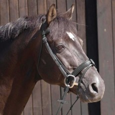 Caldene Crank Flash Bridle (Black)