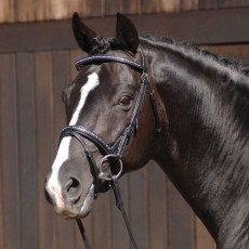 Caldene Crystal Flash Bridle (Black)
