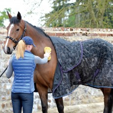 Masta Pony Fleece & Mesh Cooler Rug (Navy)