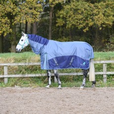 Masta Fieldmasta 100g Fixed Neck Turnout Rug (Blue/Grey)