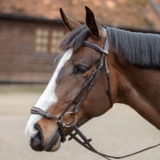 Mark Todd Bridle With German Drop Noseband