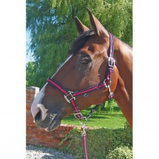 JHL Comfort Headcollar (Navy/Red)