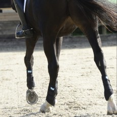 Equilibrium Stretch & Flex Flatwork Wraps (Navy)
