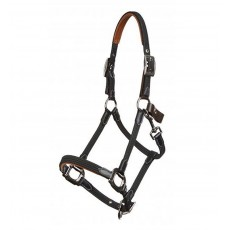 LeMieux Breakaway Headcollar (Black/Brown)