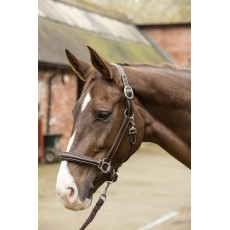 Mark Todd Leather Raised Fancy Stitch Headcollar (Havana)