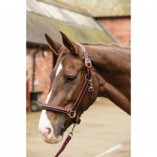 Mark Todd Leather Raised Fancy Stitch Headcollar (Red/Brown)