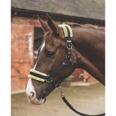 Mark Todd Fleece Lined Headcollar with Lead Rope (Black/Natural)