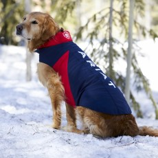 Ariat Team Softshell Dog Jacket (Team)