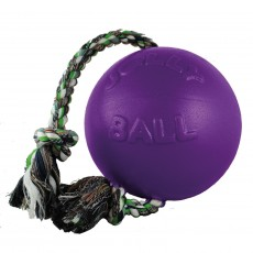 Jolly Pets Romp-N-Roll Jolly Ball (Purple)