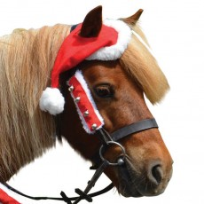Hy Christmas Santa Bridle Set (Red & White)