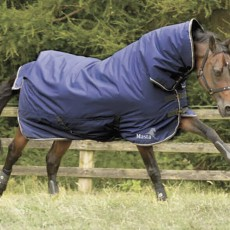 Masta Avante 170g Fixed Neck Turnout Rug (Navy)