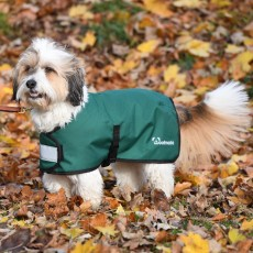 Woofmasta Dog Waterproof Coat  (Green)
