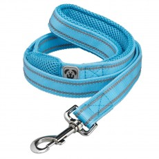 Woofmasta Hi-Viz Flashing Dog Lead (Aqua)
