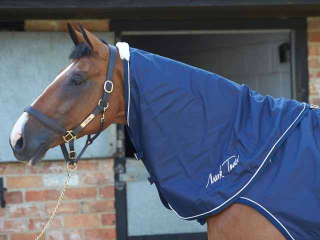 Mark Todd Horse Walker & Lunge Neck Cover (Navy)
